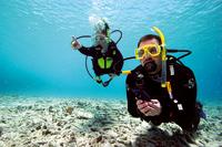 Objectif formation bapteme initiation cours de plongée Bruxelles NEMO33